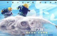 tofu-2017-23-201711951